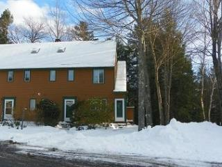Waterville Valley Pet Friendly Vacation Condo with Membership to White Mountain Athletic Club - White Mountains vacation rentals