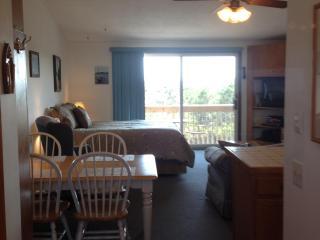 UNIT 24 - Deluxe - North Truro vacation rentals