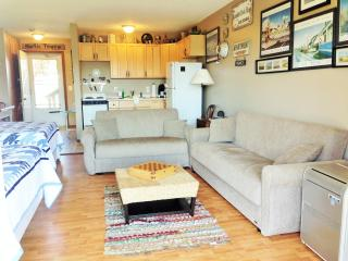 Nice Condo with Deck and Internet Access - North Truro vacation rentals