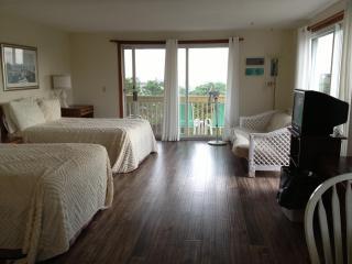 UNIT 30 - Deluxe - North Truro vacation rentals