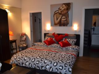 Charming Studio nearby Atomium - Jette vacation rentals