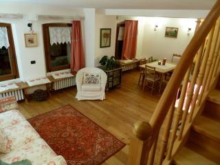 2 bedroom condo in Borca,heart of Dolomites - Borca di Cadore vacation rentals