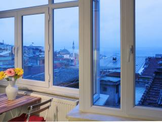 Istanbul - Very Central Panaromic 2 BR Apt - Istanbul vacation rentals