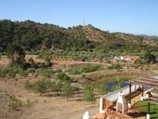 Algarvean Countryside Apartment - Sao Bartolomeu de Messines vacation rentals