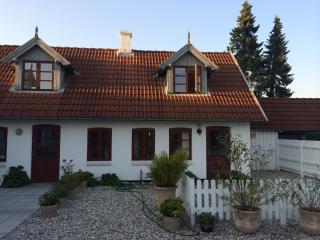 Newly renovated apartment in lovely Tisvildeleje - Tisvildeleje vacation rentals