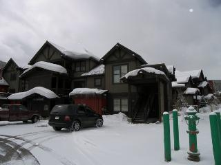 The Cache 2 Bed 2 Bath - Copper Mountain vacation rentals