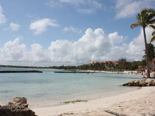 Perfect Condo with A/C and Satellite Or Cable TV - Puerto Aventuras vacation rentals