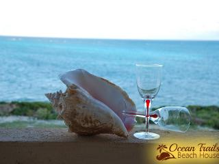 Beautiful Ocean Trails Beach House - Grand Turk vacation rentals