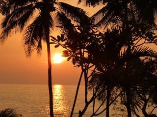 Paradise Awaits - Hale Nai'a - Captain Cook vacation rentals
