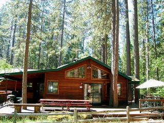 Beautiful 3 bedroom House in Wawona with Deck - Wawona vacation rentals