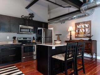 MODERN 3 Bedroom Southside Urban Loft - Pittsburgh vacation rentals