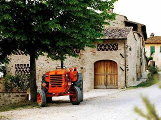 Wine Barrel House - Montefiridolfi vacation rentals