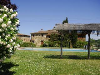 Vineyard Apartment - Greve in Chianti vacation rentals