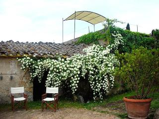 Farmhouse Lupia - Tuscany vacation rentals