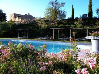 Apartment Luciana - Certaldo vacation rentals