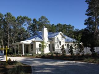 Lovely 3 bedroom House in Seagrove Beach with Internet Access - Seagrove Beach vacation rentals
