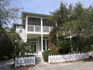 3 bedroom House with Internet Access in Seagrove Beach - Seagrove Beach vacation rentals