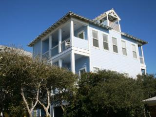 Lovely 5 bedroom House in Seagrove Beach - Seagrove Beach vacation rentals