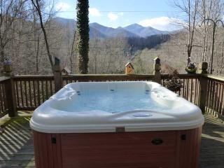 Maggie Valley Alpine Chalet (golf, ski) - Maggie Valley vacation rentals