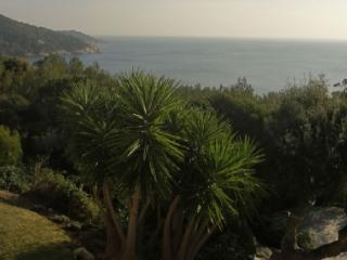 Holiday rental Villas Ramatuelle (Var), 180 m², 10 000 € - Ramatuelle vacation rentals