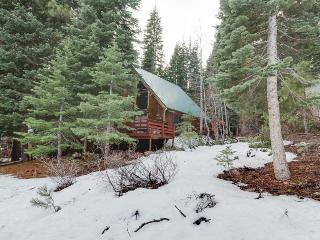 Unique & cozy cabin in the woods with a private hot tub! - Truckee vacation rentals