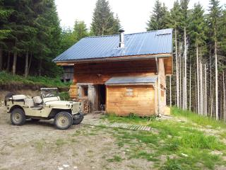 Nice Ski chalet with Balcony and Outdoor Dining Area - Marnaz vacation rentals