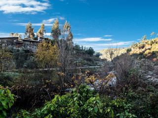 Casa do Forno - Proenca-a-Nova vacation rentals