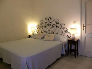Nice Condo with A/C and Balcony - Poltu Quatu vacation rentals