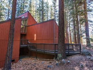 3BR/2BA Contemporary Pine Forest House w/ Loft, South Lake Tahoe - South Lake Tahoe vacation rentals