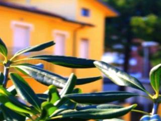 Cottage Grace - Maestrale Loft - Rimini vacation rentals