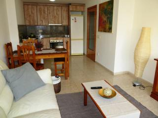 Nice Condo with Internet Access and A/C - Lloret de Mar vacation rentals