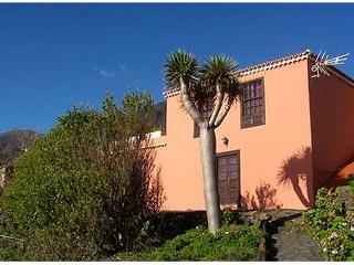 Bright 1 bedroom Vacation Rental in Villa de Mazo - Villa de Mazo vacation rentals
