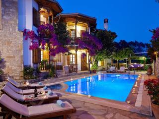 Villa Vali Eda - Akyaka vacation rentals