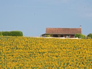 L'Emilienne, Longeveau - Dordogne Region vacation rentals