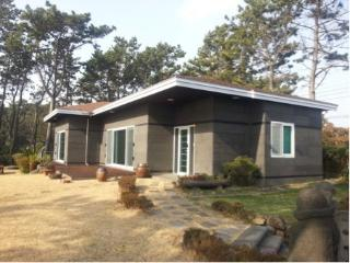 Ocean Front Jeju Getaway - South Korea vacation rentals