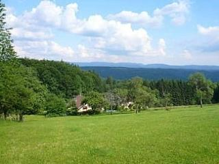 Beautiful Gite with Parking and Grill - Luxeuil-les-Bains vacation rentals