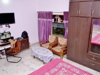 Beautiful House with Internet Access and A/C - Udaipur vacation rentals