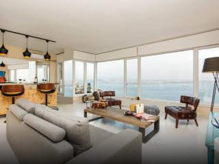 BOSPHORUS SEA AND SULTANAHMET VIEW, CENTER, TAKSIM - Istanbul vacation rentals