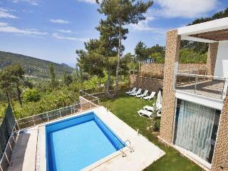 5 Bedrooms Seculed Villa Nzl in Islamlar Village - Kalkan vacation rentals