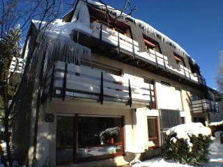 Nice Condo with Internet Access and Satellite Or Cable TV - Winterberg vacation rentals