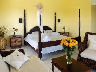 Tropical Studio, Puerto Plata, Dom Rep - VIP - Puerto Plata vacation rentals