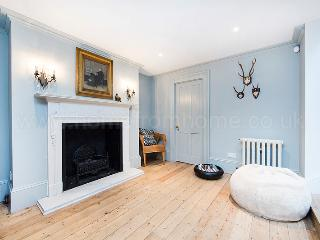Bright and spacious family house in Hammersmith with a large garden - London vacation rentals
