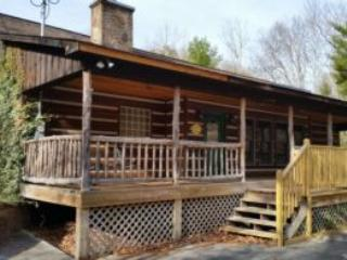 Nice Townsend Cabin rental with Deck - Townsend vacation rentals