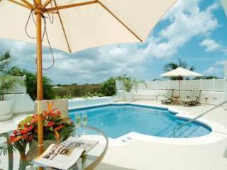 Luxury St James Barbados Exclusive villa - Porters vacation rentals