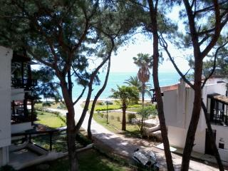 Datca, Aktur  Holiday Flat with Sea view - Mugla Province vacation rentals