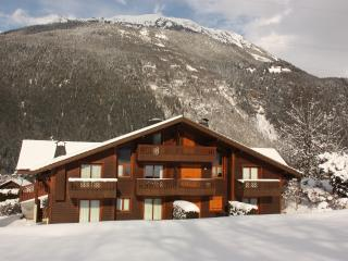 SPACIOUS DUPLEX IN LES HOUCHES CHAMONIX - Les Houches vacation rentals