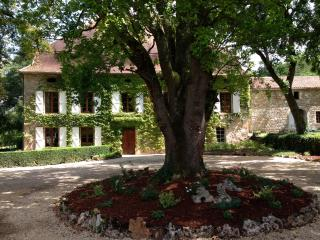 Gite Chateau La Riviere Lot France - Calvignac vacation rentals