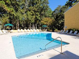 Beautiful 2BR/2BA Villa, Just Minutes from the Beach and is Simply Terrific - Hilton Head vacation rentals