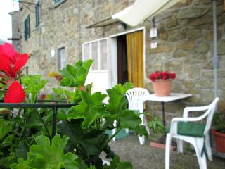 Nice Condo with Internet Access and Balcony - Collodi vacation rentals