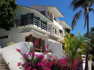 Sunny House with Internet Access and A/C - Santa Cruz Huatulco vacation rentals
